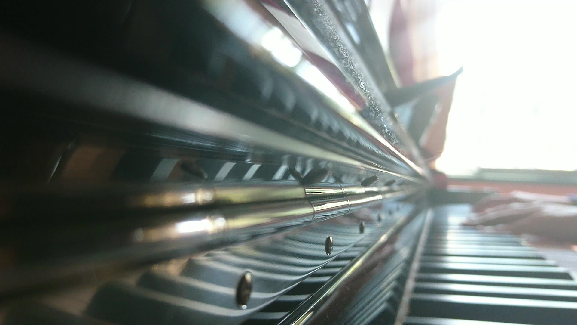 【钢琴】秒速五厘米预告ost /新人首录还请多指教图片