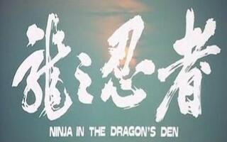【动作】龙之忍者(1982) 李元霸一片玩完