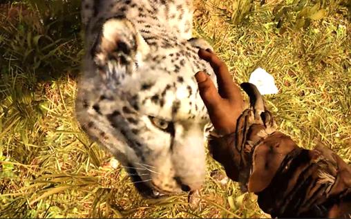 孤岛惊魂原始杀戮中所有可驯化动物及其狩猎