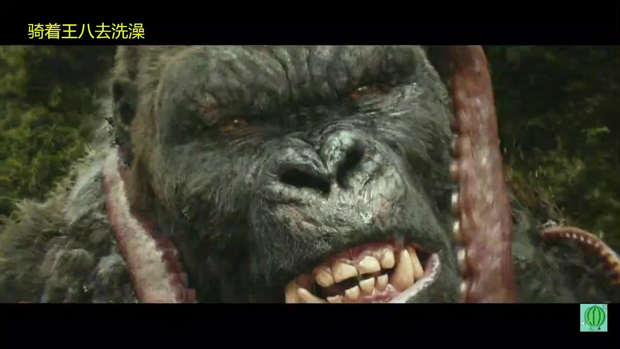 《金刚:骷髅岛》带你看巨大怪兽怎样大战生吃巨鱿,场面震撼