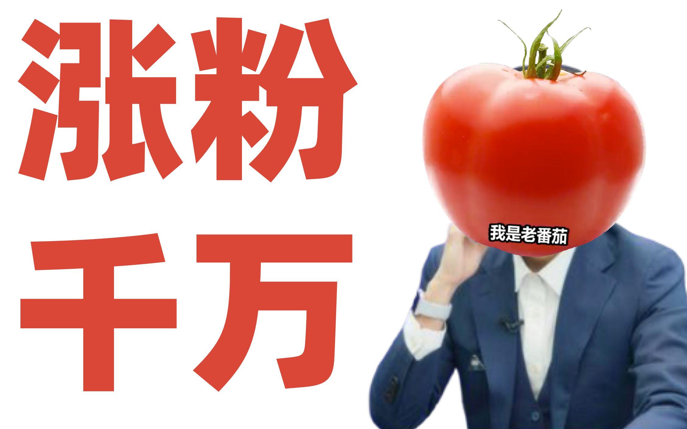 【阿扶】B站粉丝破千万,老番茄为何那么多人喜欢?