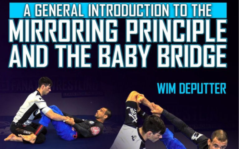 General Introduction To The Mirrorng Principle & The Baby Bridge part 2