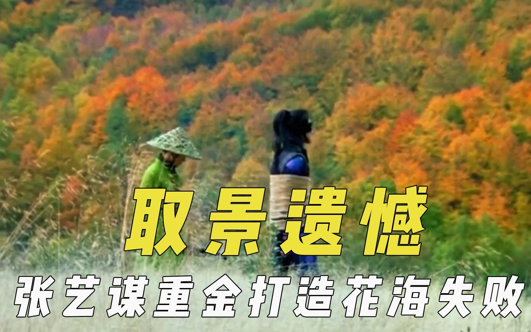 导演取景留下遗憾,张艺谋重金打造花海失败,琅琊山取景爬两小时