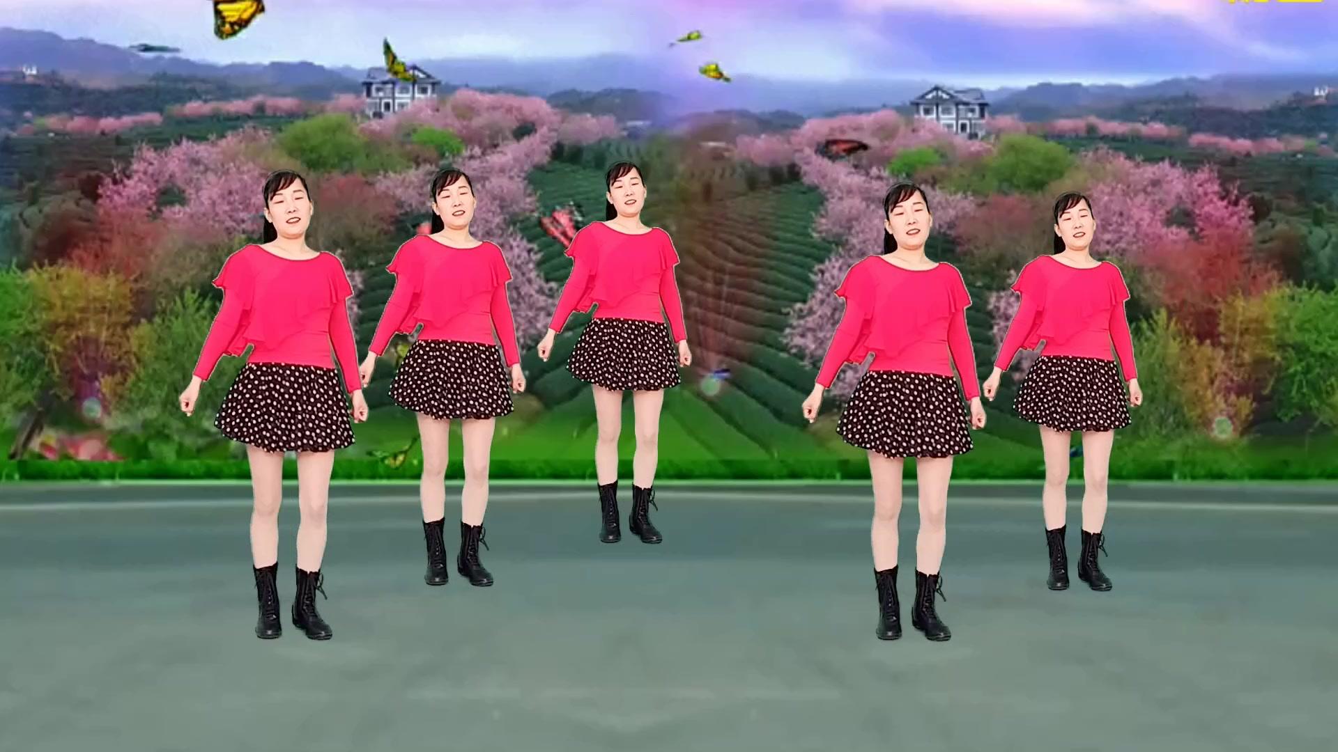 玫香广场舞《酒醉的蝴蝶》网红版,32步有教学