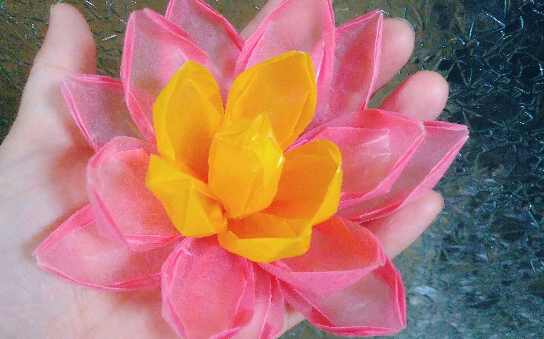 【折纸教程】折法简单效果超美的立体莲花 组合折纸