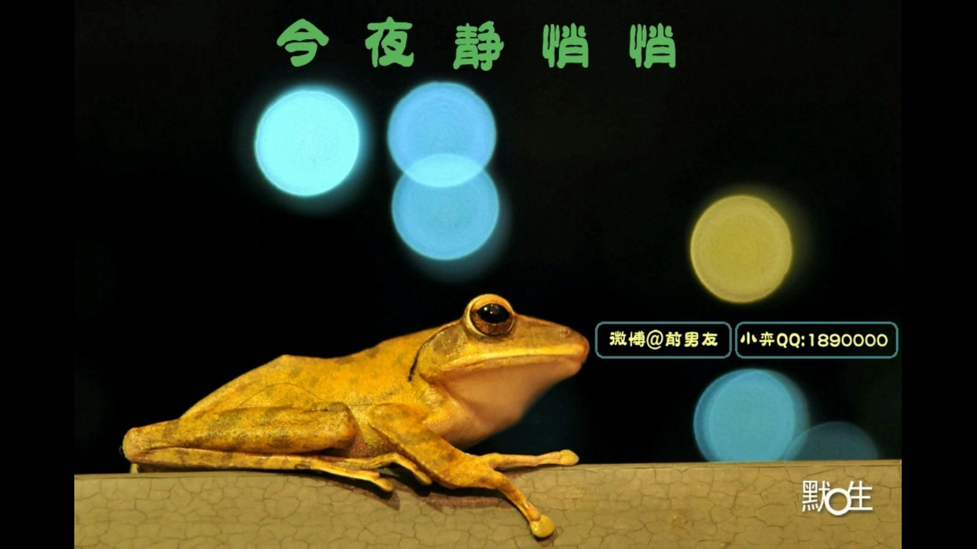 求:刘晓婷 求实英语全套视频及mp3发463707012@qq.com