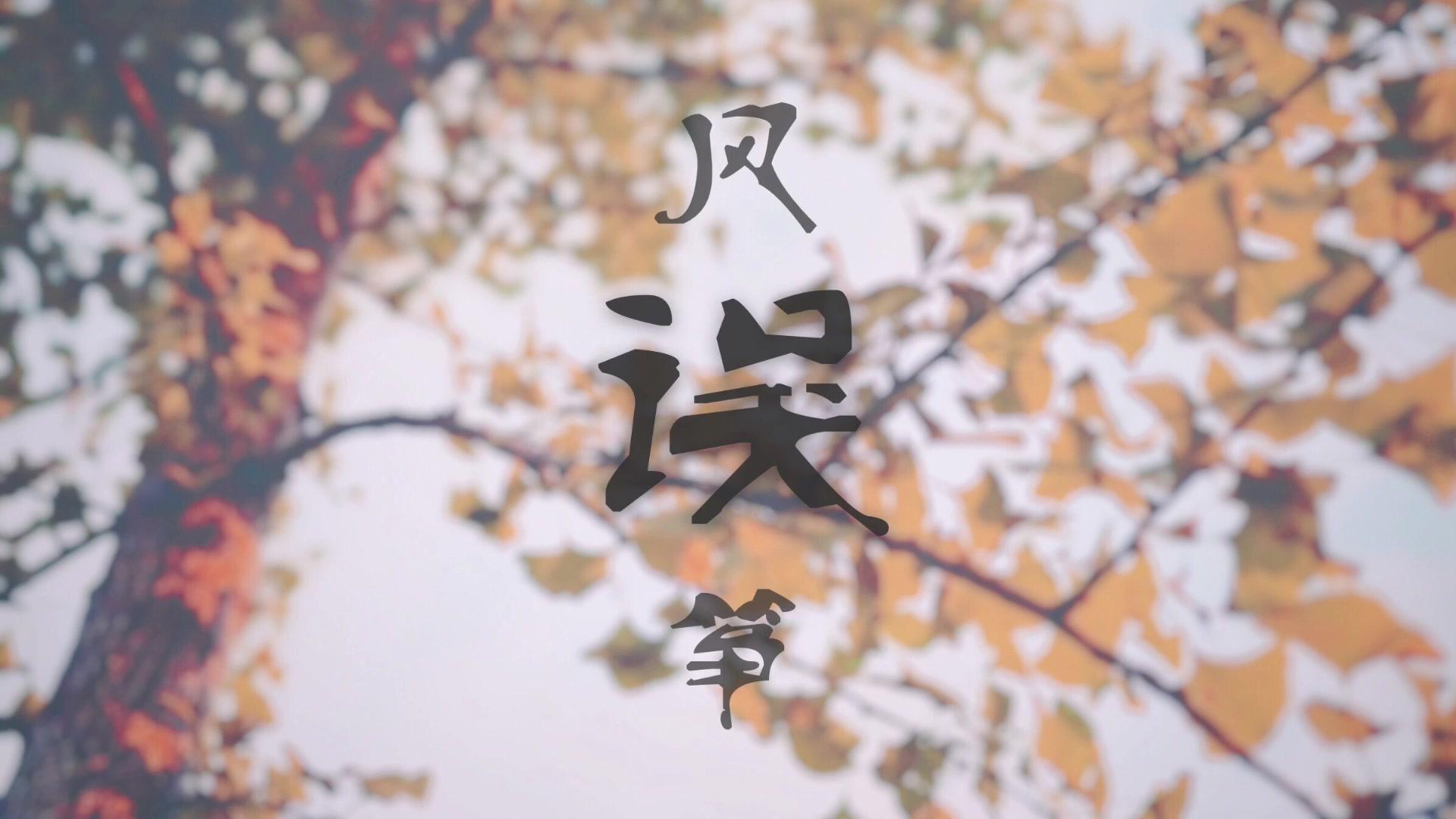 【二胡】风筝误