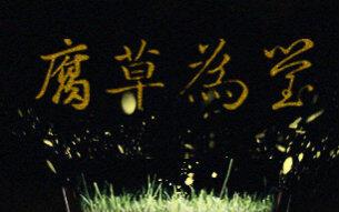 【萧忆情x哦漏】腐草为萤