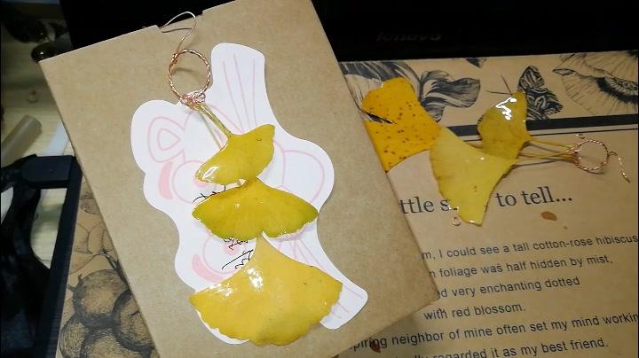 【三翅蝶】银杏叶标本耳环_手工_生活_bilibili_哔哩图片
