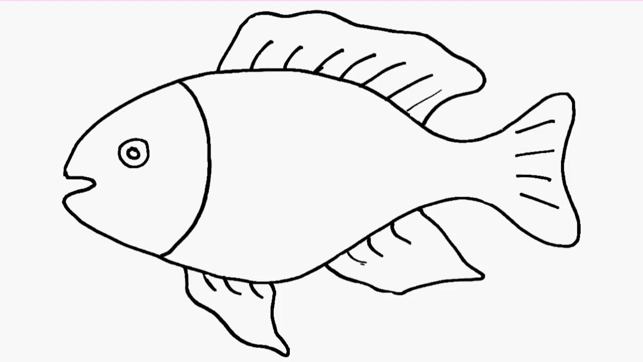 儿童简笔画 鱼 哔哩哔哩 ゜ ゜ つロ干杯 bilibili