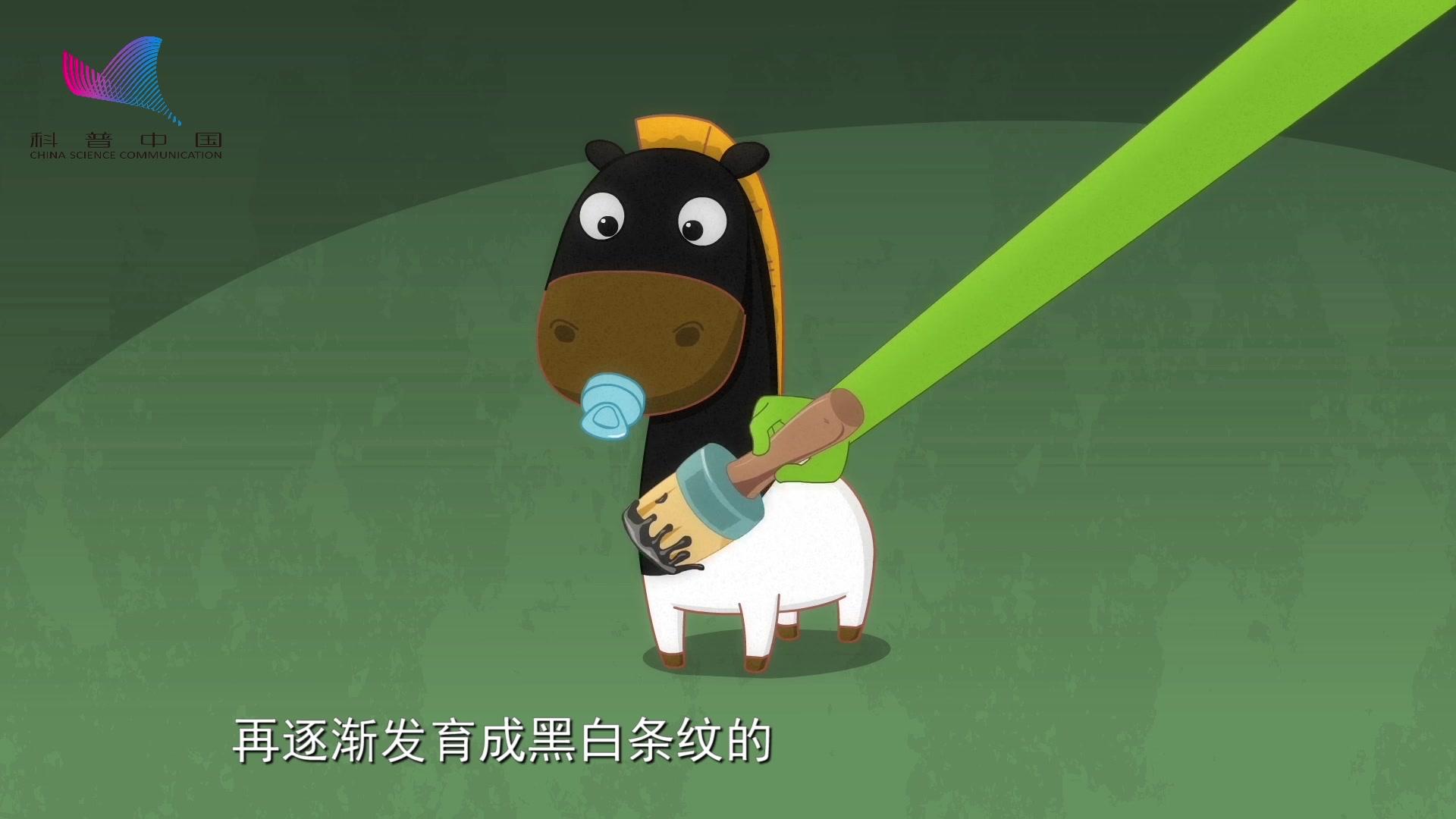 科普中国之阿U学科学 第10集 斑马是黑斑白马还是白斑黑马