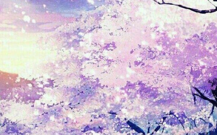 清明樱花祭简谱_【枫棂】听歌向 llp清明樱花祭全曲fc