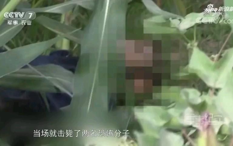 新疆反恐!特战队员被刺掉6颗牙,击毙两名恐怖分子