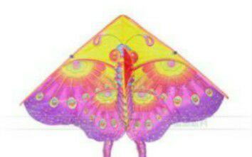 蝴蝶风筝的制作(3)