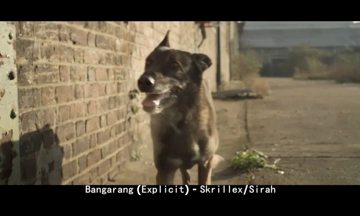 【Beatbox】Skrillex-Bangarang