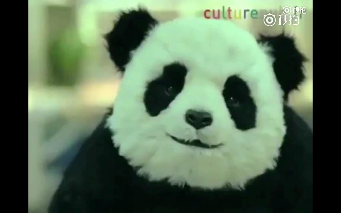 【完整版】永远不要对熊猫说不!