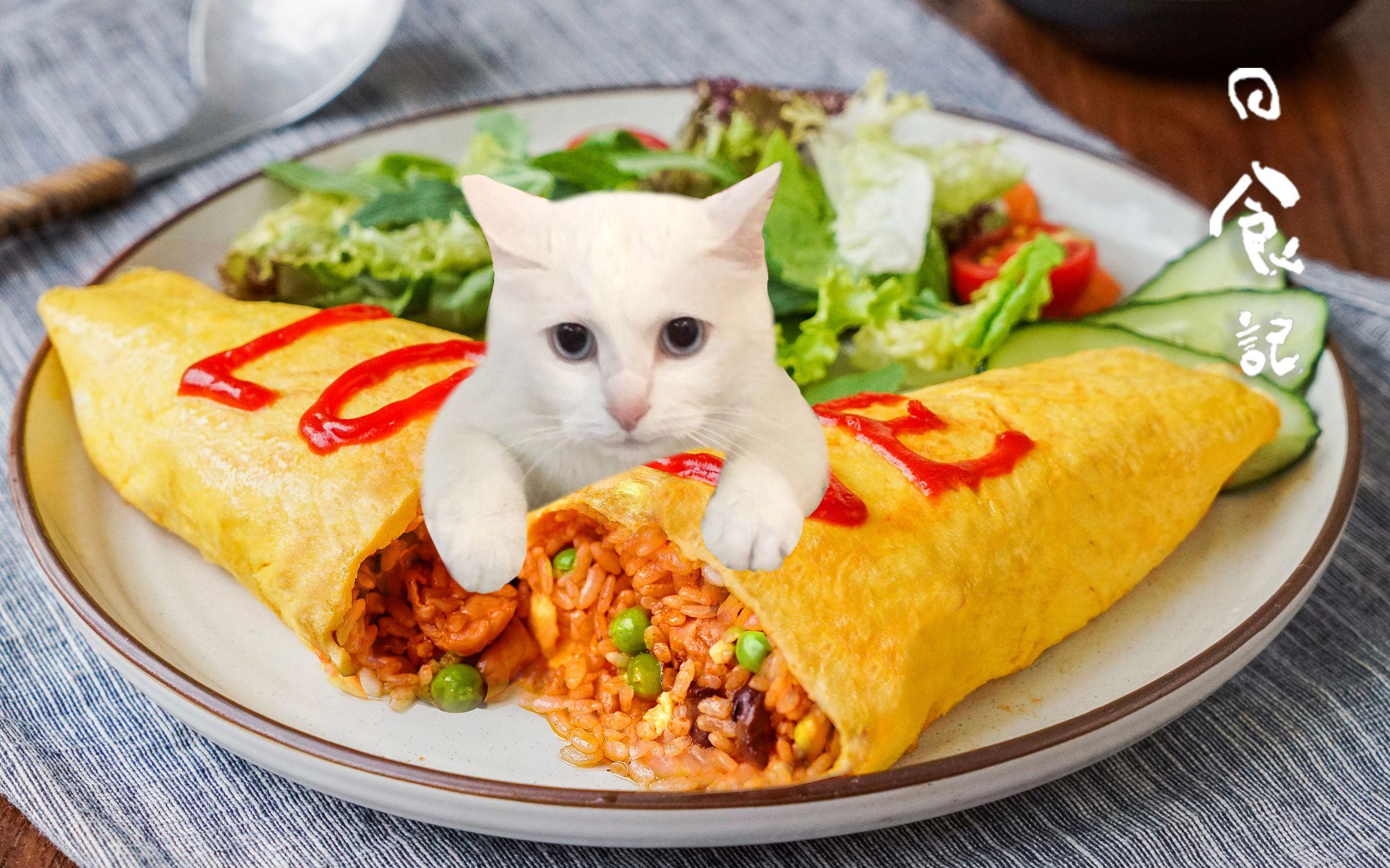 【日食记】蛋包饭出锅的时候你敢手抖一个给我看看?!