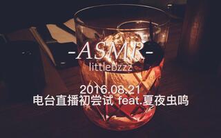 【中文ASMR】1小时-电台直播初尝试-feat.夏夜虫鸣 (笔记本·键盘声·棉布袋