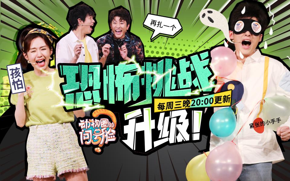 《动物圈的问号脸》第8期: 啊吗粽挑战扎气球...形象再次崩塌