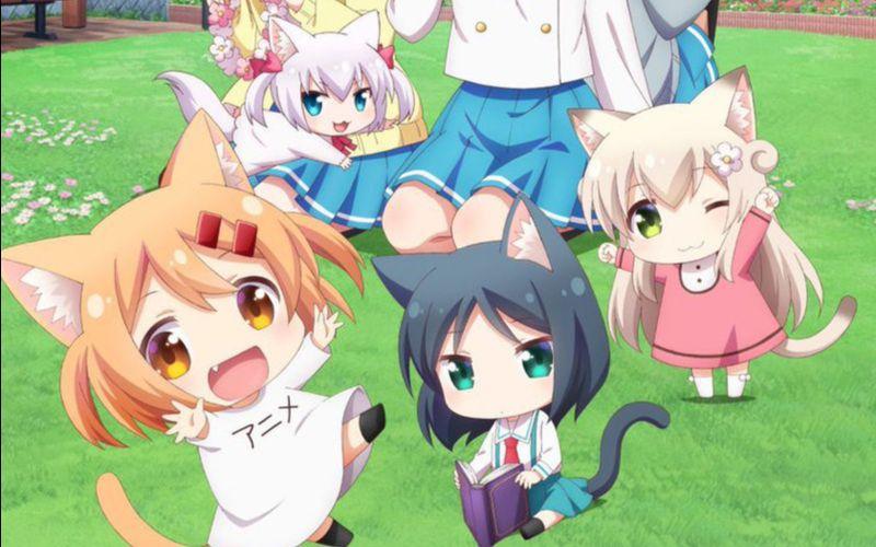 猫咪日常ED《にゃんこ is L♥VE!》