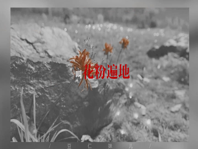 【马嘉祺&简亓】处处吻