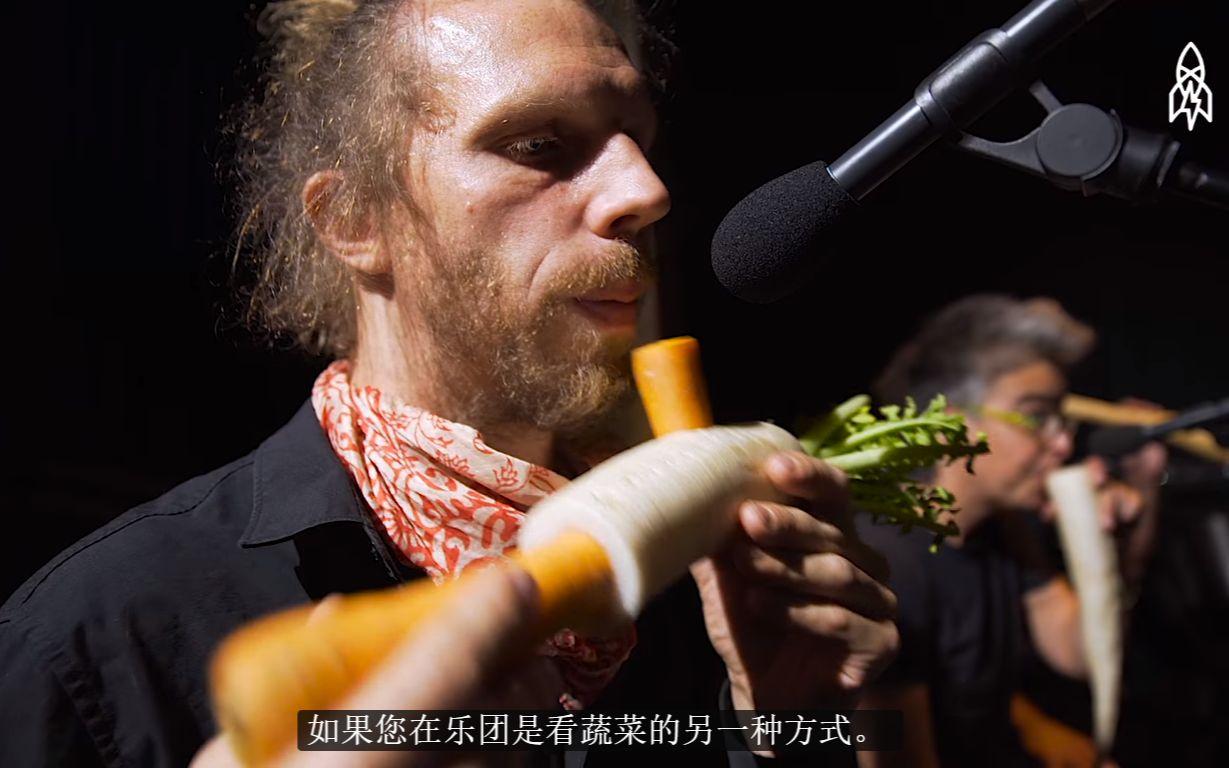 蔬菜乐器-一个以蔬菜当做乐器的乐队(机翻)