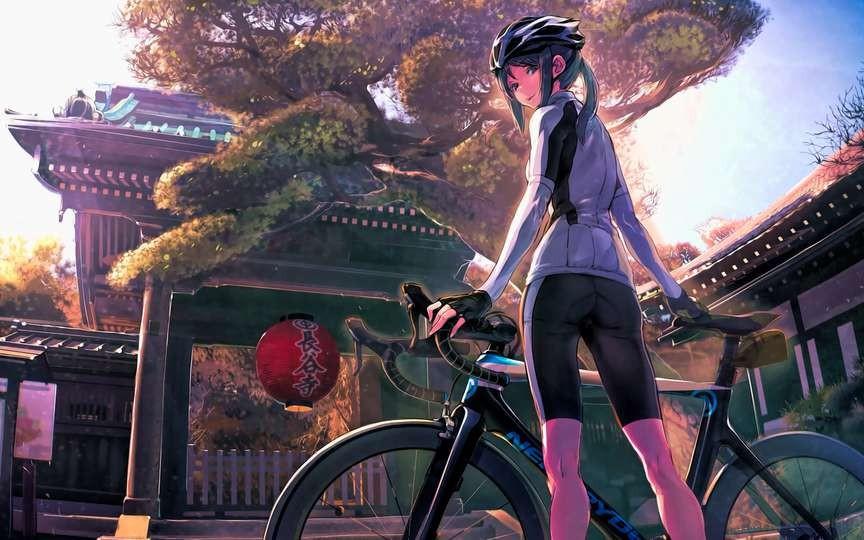 【小锋骑谈】自行车品牌巡礼:就是加入不了一王四后的百年杂牌,威廉的复杂历史(重置版上)