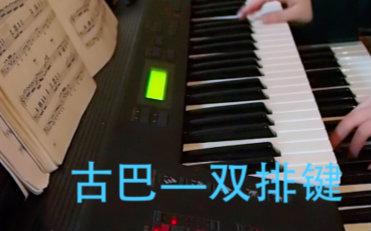【双排键电子琴】 古巴图片
