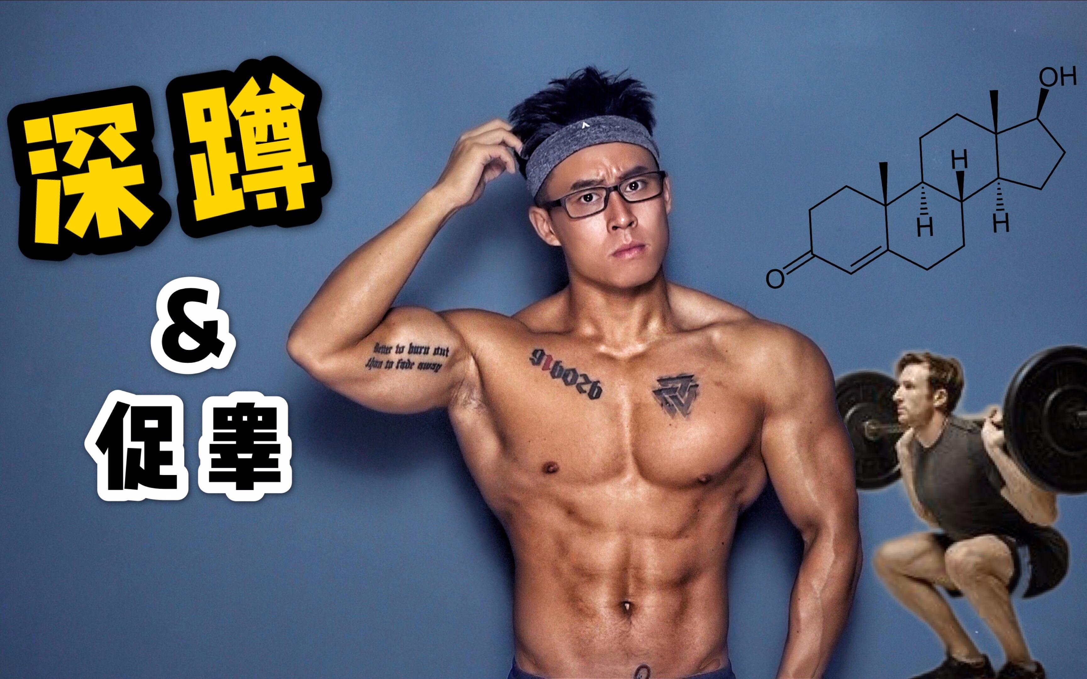 促睾增肌素_健身迷思   深蹲是否能促进「睾酮」分泌,帮助「增肌」?_哔哩 ...