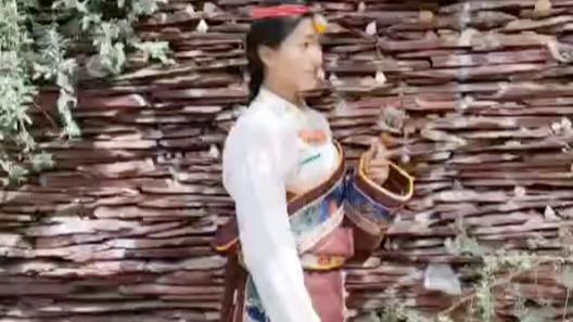 来西藏约拍吧
