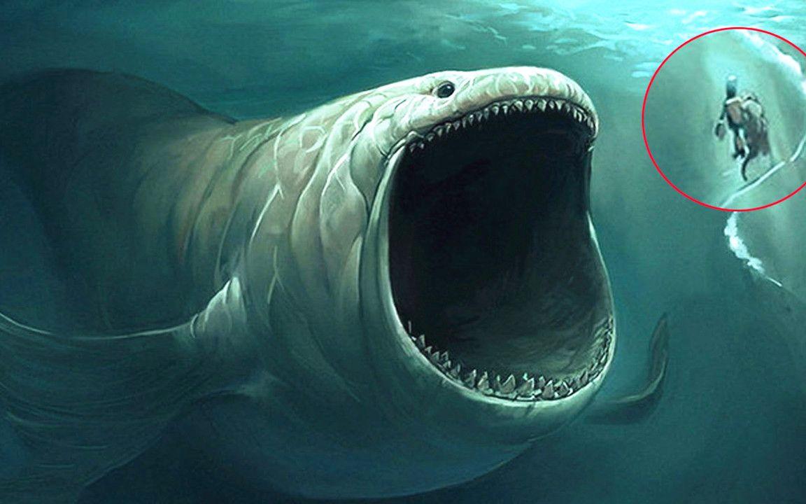 巨型食人鱼2_水怪的全部相关视频_bilibili_哔哩哔哩弹幕视频网