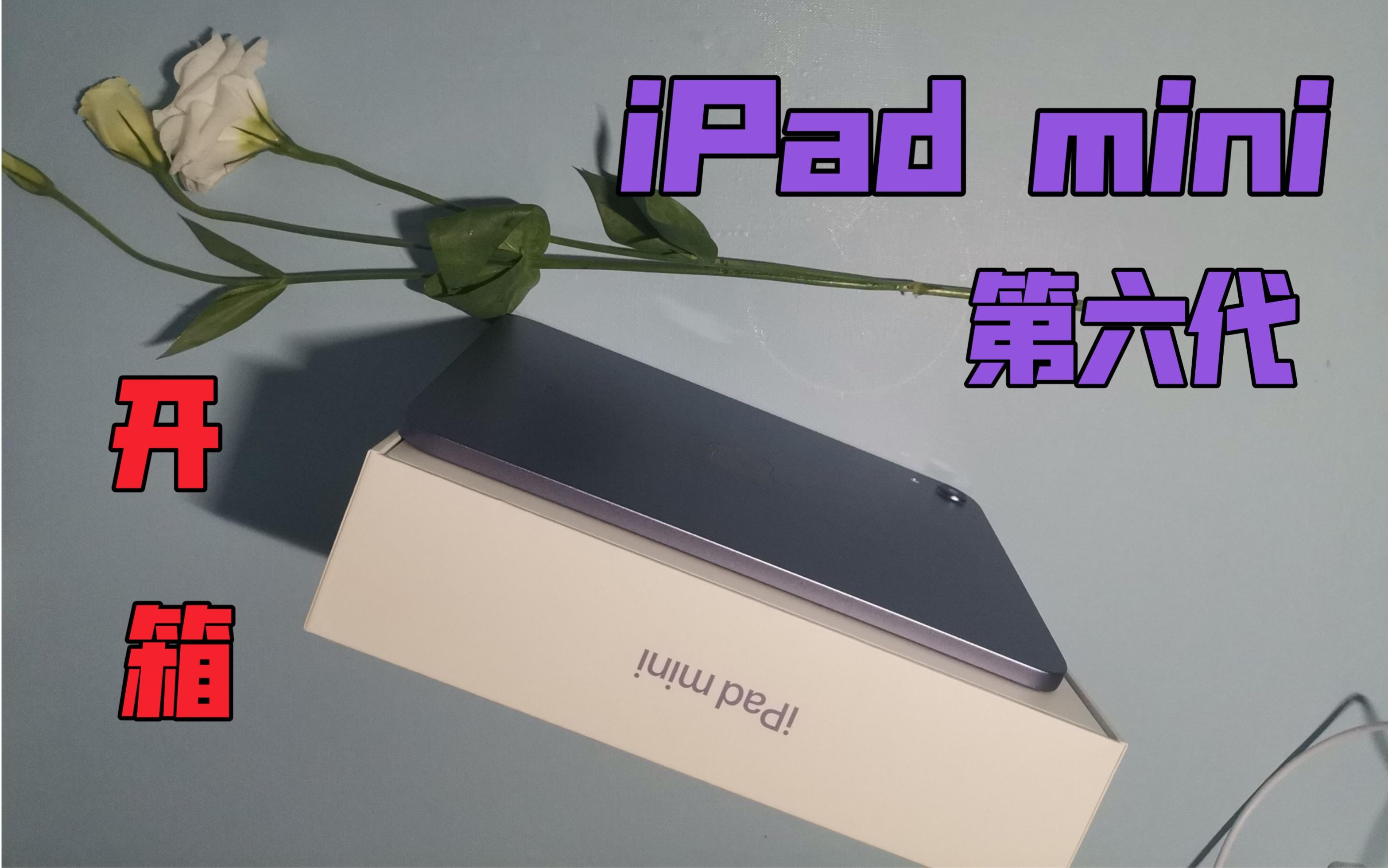 iPad mini6紫色开箱,小姐姐:真香!